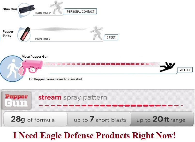 common sense solutions eagle defense protection products