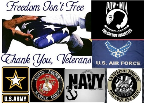 freedom-isnt-free-thank-you-veterans